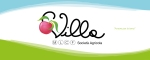 Logo Villa nel banner Facebook dell'azienda